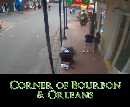Tropical Isle Live Street Web Cam Streaming